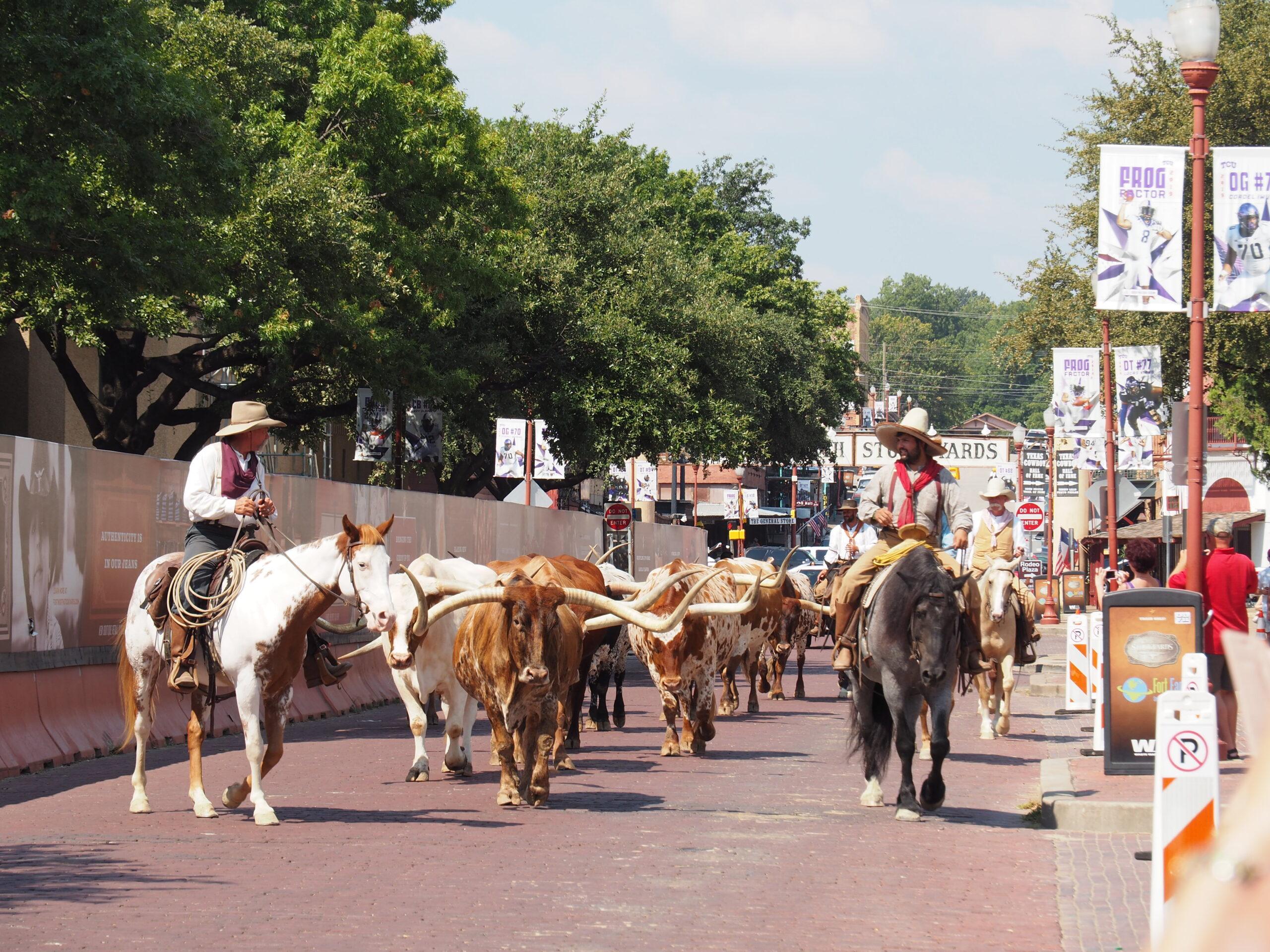 Trainieren und Leben in Texas